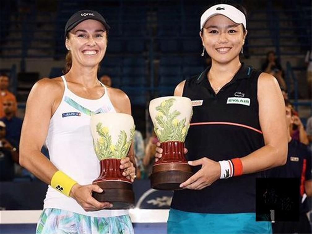 Taiwan's Chan, Hingis win doubles title at Cincinnati Open
